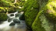 Beautiful Mountain Stream With Moss On Rocks