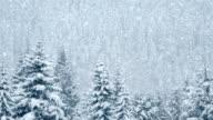 Wunderschöne pines unter Schnee, Endlos wiederholbar