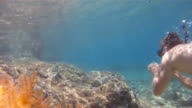 HD SLOW MOTION: Beautiful Snorkeling In Shallow Water