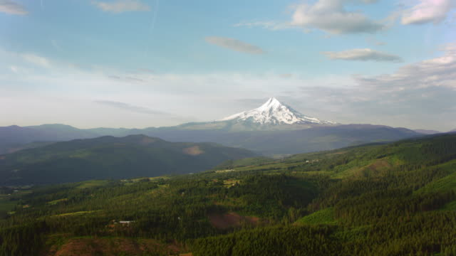 AERIAL Beautiful snow covered Mount Hood rising above the green surroundings