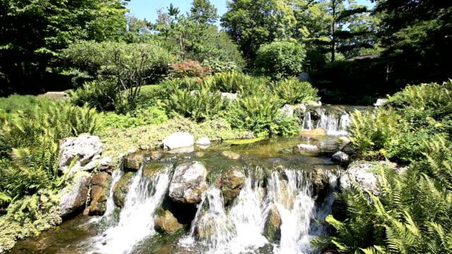 beautiful waterfall in japanese garden