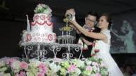 Beautiful wedding in soap bubbles