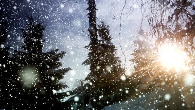 Beautiful winter with sun loop