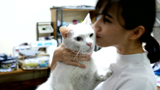 beautiful young womanwith a persian mix cat