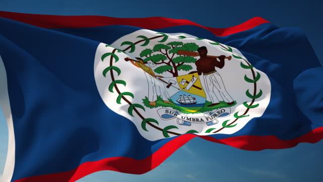 4K Belize Flag - Loopable