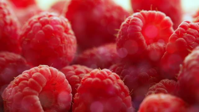 Berries raspberry