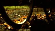 Bicycle Riding Through The Leaves (Super Slow Motion)