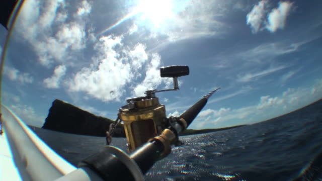Big game fishing in rough waters; natural motion