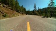 WS Bikers driving motorcycles on road in Sierra National Forest / Fresno County, California, USA