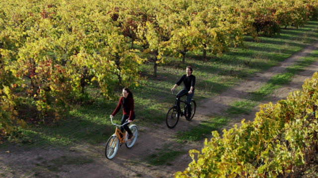 Biking in Napa Valley Vineyards
