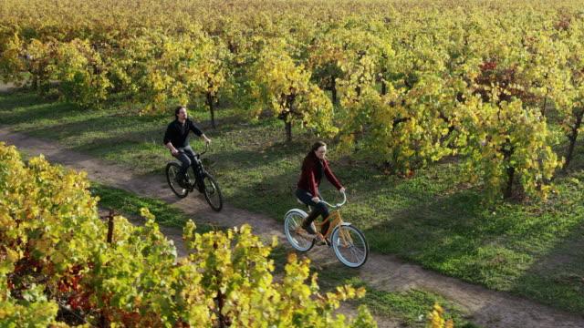 Bicicletta a Napa Valley Vineyards