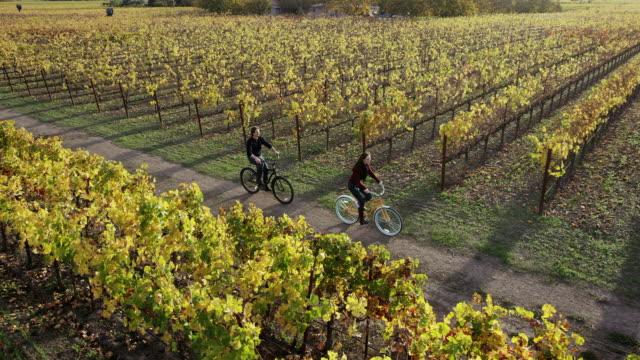 Biking in Vineyards