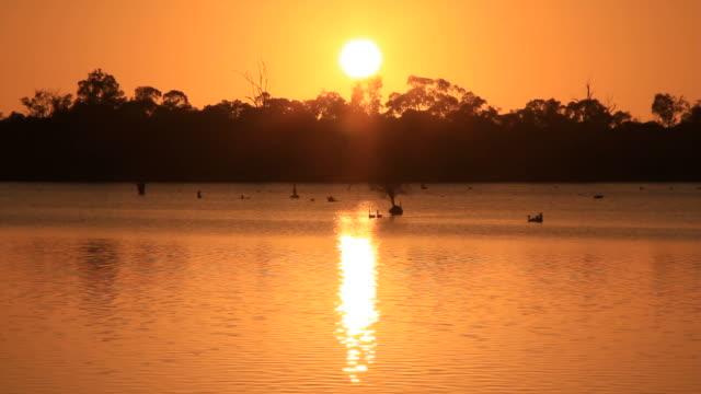 Billabong Australia