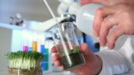 Bio Lab Experiment