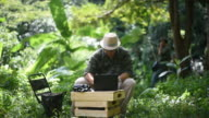 Biologist team using a laptop and radio telemetry antenna to track the sound of wild animal