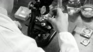 1948 MONTAGE Biologist testing water samples for microscopic organisms / London, England