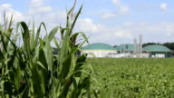 Biomass energy plant behind a cornfield Energiewende Biogas
