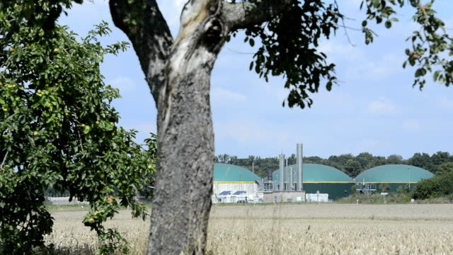 Biomass energy plant behind a wheat field Energiewende Biogas