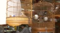 Bird cages at traditional bird market, Hong Kong