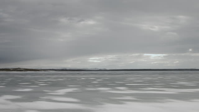 A bird flies across a frozen lake in northern Iceland.