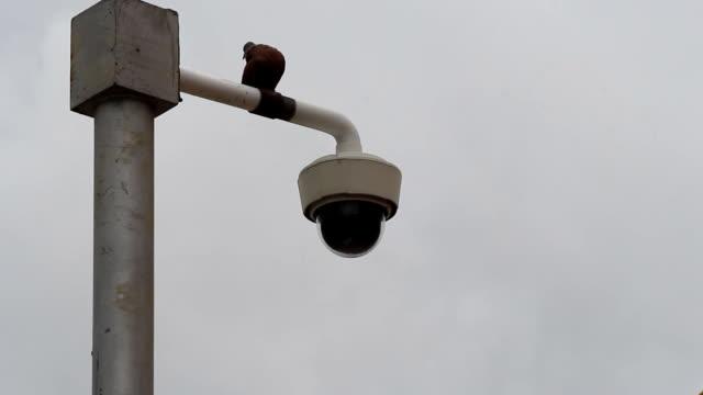 Vogel Pol CCTV