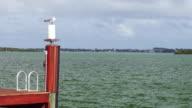 WS bird sitting on dock, shore rippling