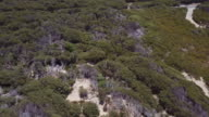 Bird's eye view of 90 mile Beach and landscape, Victoria, Australia