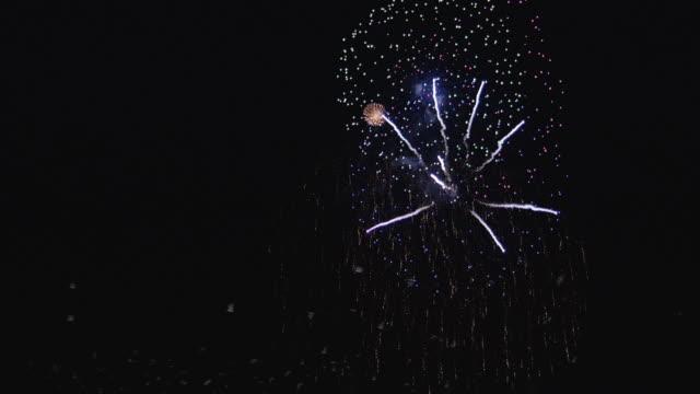 WS Birds flying near firework display at night