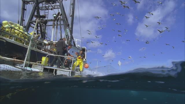 WS SLO MO ZI Birds flying overhead, men in boat catching fish / Moorea, Tahiti, French Polynesia