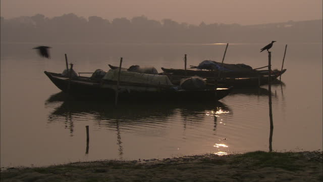Birds perch on pier posts near docked boats on a river in India at sunset.