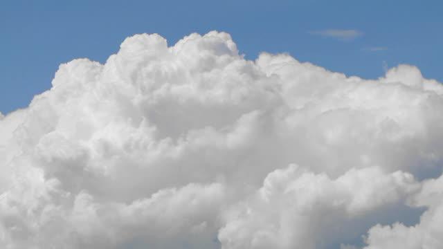 Birghtly lit Cumulus summer clouds