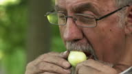 SLOW MOTION: Biting in Onion