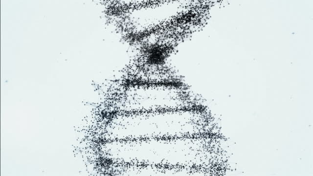 Black and white DNA