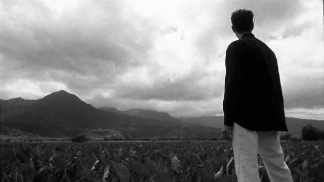 Black and white medium shot pan man standing in field of taro plants looking at mountains