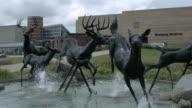 Black Deer Statues at The Eiteljorg Museum of American Indians and Western Art