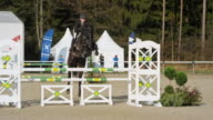 Black horse with rider jumping over obstacles in sunshine