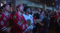 WGN Blackhawks Fans In A Bar Tense And Cheering Watching the Final Stanley Cup Game on June 15 2015 in Chicago Illinois