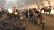MS Blacksmith competition at Calgary Stampede / Calgary, Alberta, Canada