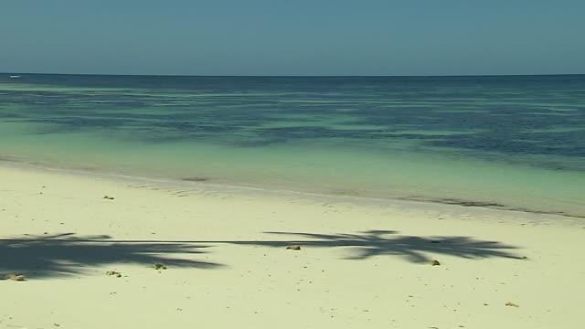 Block Shot Beach Tree Shadow Desroches Seychelles