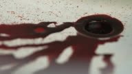 Blood Trickling into Plughole in Shower - Close Up