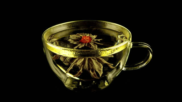 Blooming Tea Time Lapse