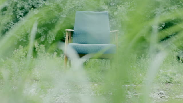 Blue chair among the plants