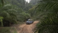 A blue jeep drives over a muddy road through a tropical jungle.