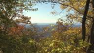 Blue Ridge Mountains and autumn leaves.
