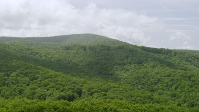 WS AERIAL POV Blue Ridge Mountains with Treetop / Gilmer County, Pickens County, Georgia, United States