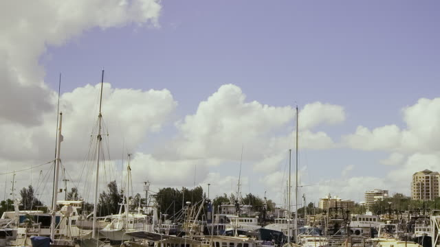 T/L MS TD Boats and yachts mooring in Darwin Harbour / Darwin Harbour, Northern Territory, Australia