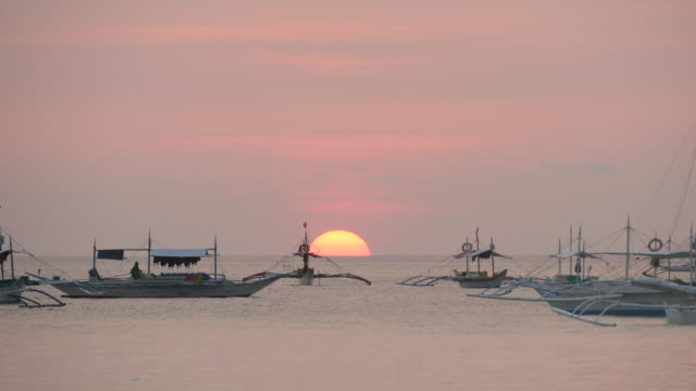 Boats jostle in calm bay, tropical harbour
