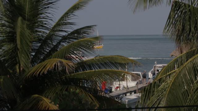 Boats on a dock, Belize paradise beauty shot