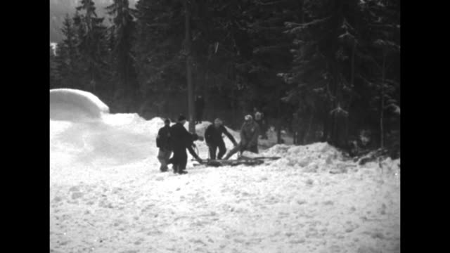 Bobsled speeding down track passes camera and rounds curve spectators standing nearby / LS bobsled track some spectators at side and pine trees all...