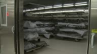KSWB Body Bags In Morgue At San Diego Medical Examiners' Office on May 16 2011 in San Diego California